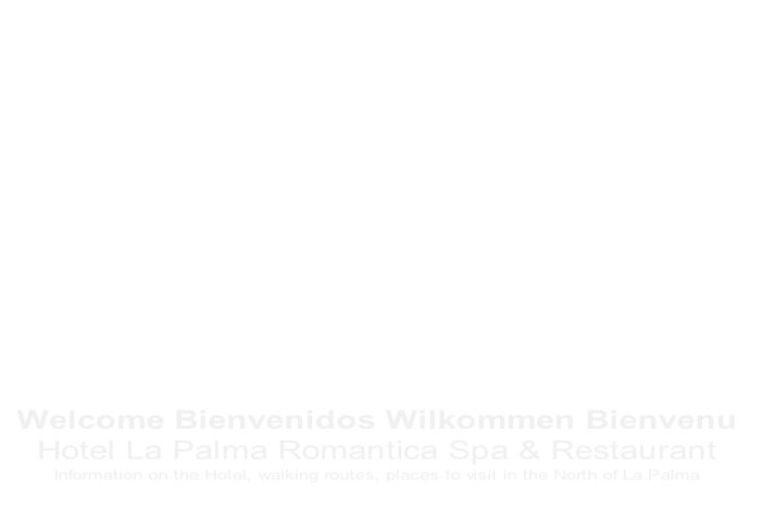 Welcome Bienvenidos Wilkommen Bienvenu